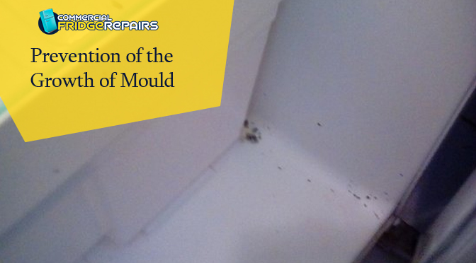 prevention of the growth of mould