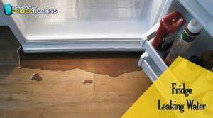 Fridge-Leaking