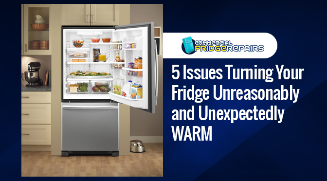 5 Issues Turning Your Fridge Unreasonably and Unexpectedly WARM