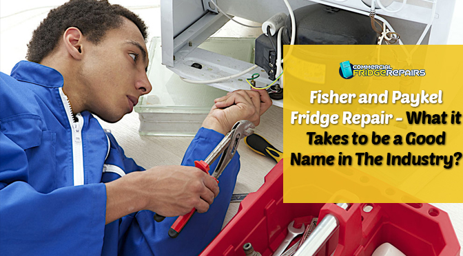 Fisher and Paykel Fridge Repair – What it Takes to be a Good Name in The Industry?
