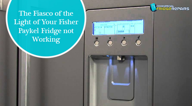 The Fiasco of the Light of Your Fisher Paykel Fridge Not Working