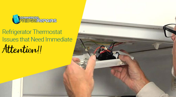 Refrigerator Thermostat Issues that Need Immediate Attention!!