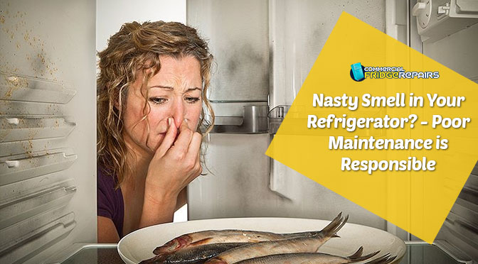 Nasty Smell in Your Refrigerator? – Poor Maintenance is Responsible