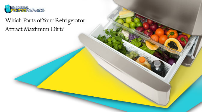 Which Parts of Your Refrigerator Attract Maximum Dirt?