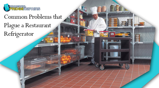 Common Problems that Plague a Restaurant Refrigerator