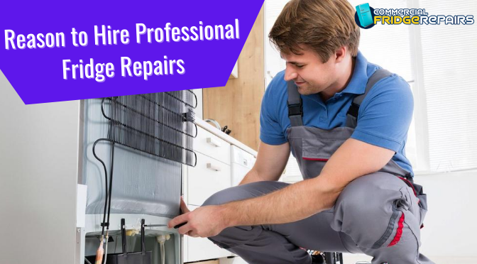 Reasons Why Hiring Professionals for Fridge Repairs Is Always a Smarter Move