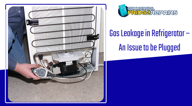 Gas Leakage in Refrigerator – An Issue to be Plugged IMMEDIATELY