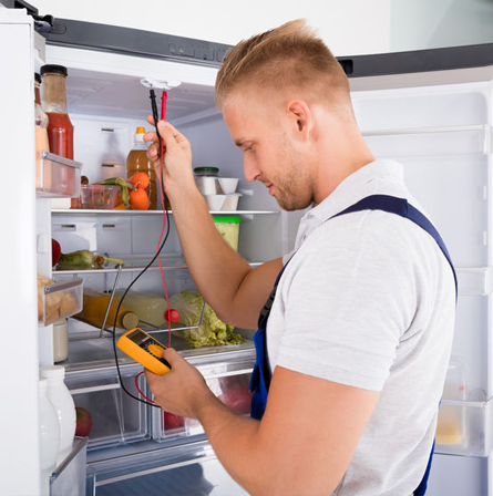 Refrigerator Repair Expert in Haberfield