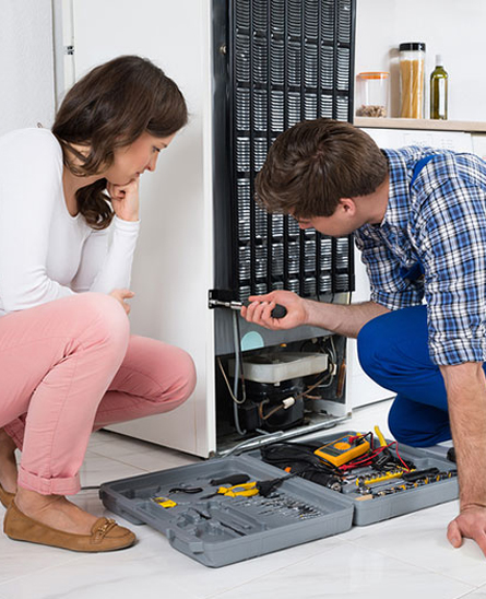 Fridge Repair Experts in Annandale