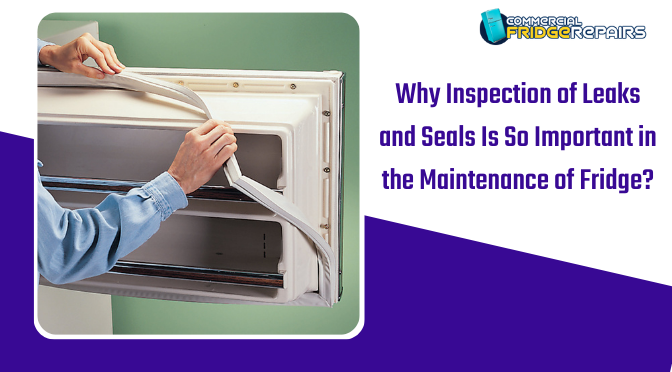 Why Inspection of Leaks and Seals Is so Important in the Maintenance of Fridge?