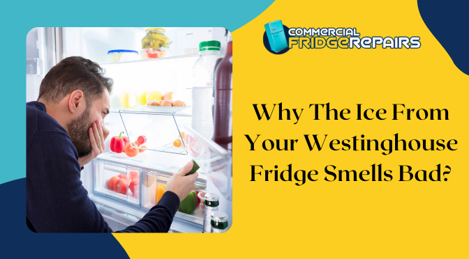 Westinghouse Fridge Repairs