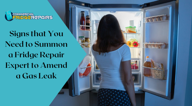Signs that You Need to Summon a Fridge Repair Expert to Amend a Gas Leak