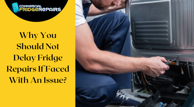Why You Should Not Delay Fridge Repairs If Faced With An Issue?